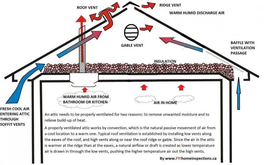 impact-of-poor-attic-ventilation-2018